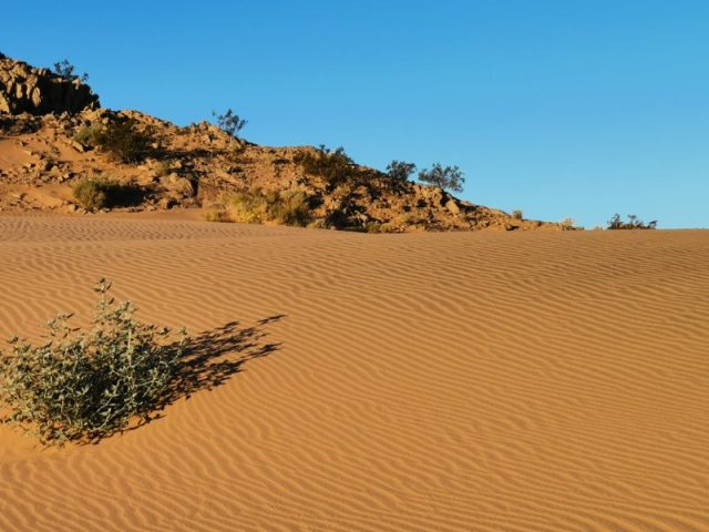 Beautiful Mexico sand dunes I